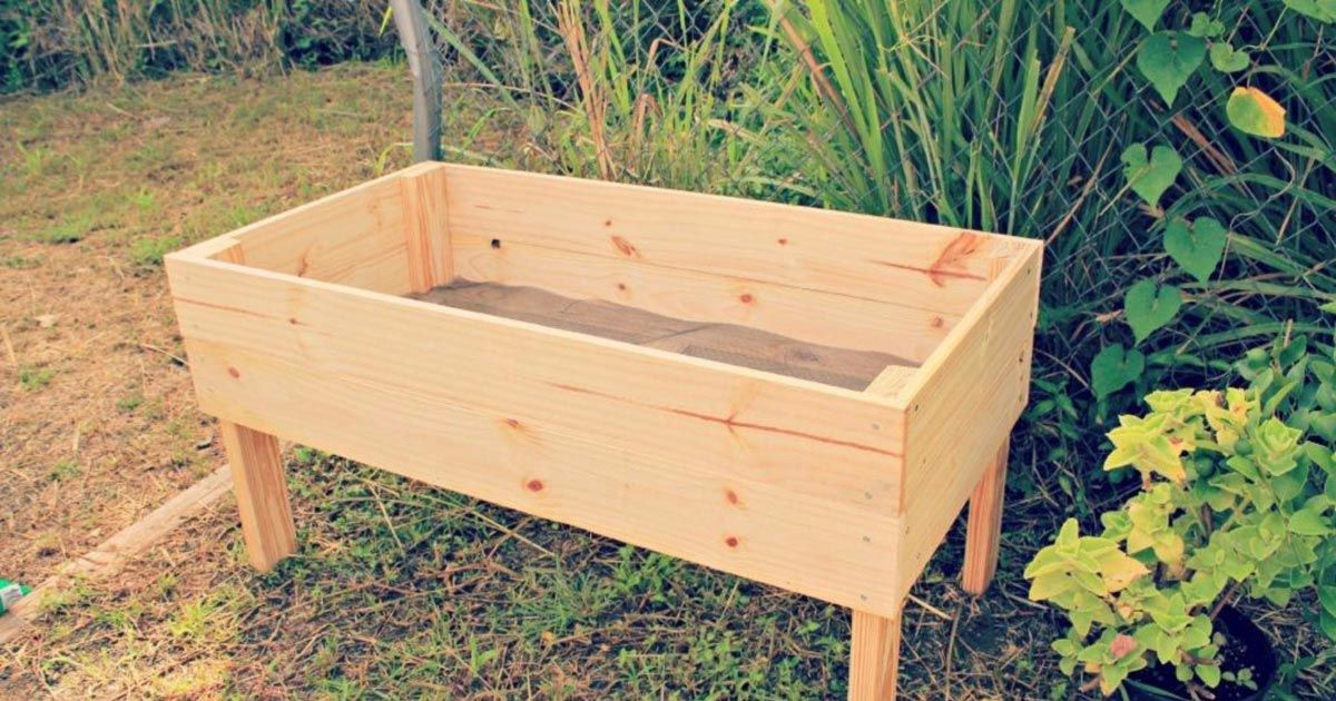 Building A Raised Garden Bed With Legs For Your Plants Gardening