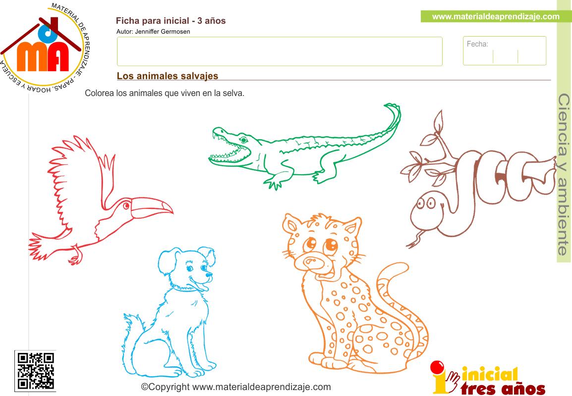 Ficha de ciencia y ambiente para educación infantil 3 años: Los ...
