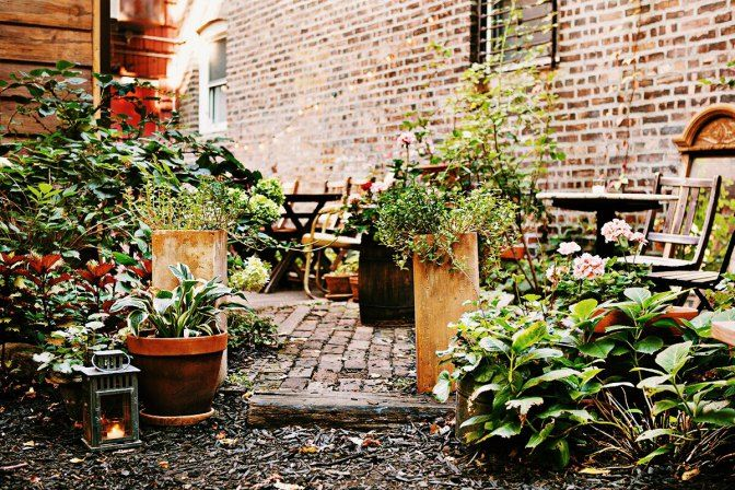 Top 3 Outdoor Brunch Spots in Greenpoint You Do Not Want