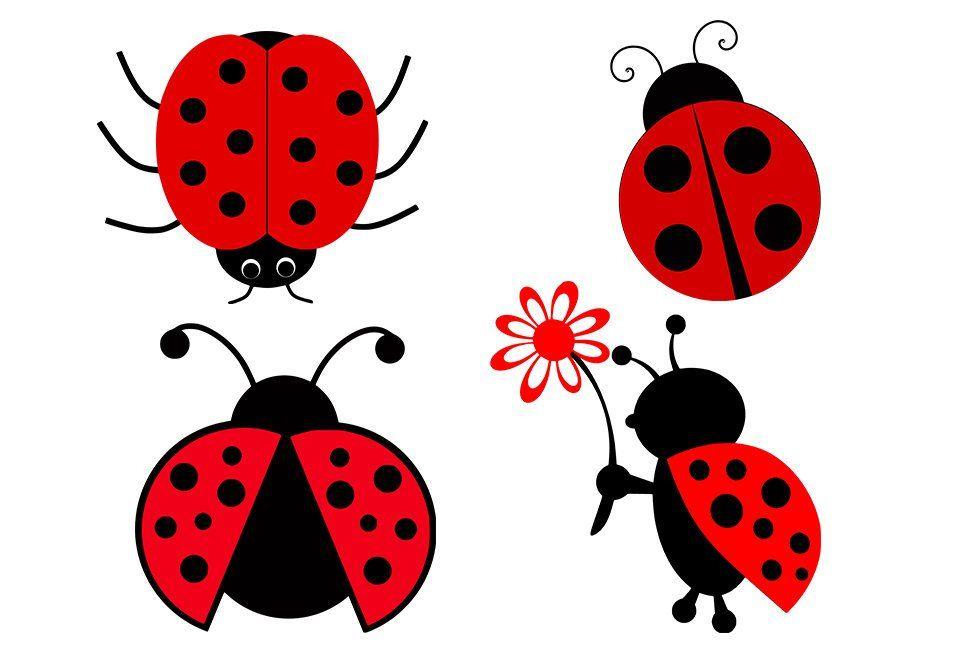 22++ Ladybug clipart no spots info