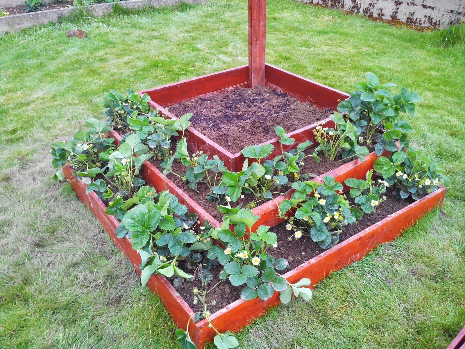 r novation transformation restauration maison la fontaine fraises 1 2 jardinage pinterest. Black Bedroom Furniture Sets. Home Design Ideas