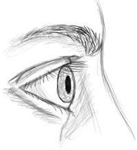 closed eye drawing side wwwpixsharkcom images