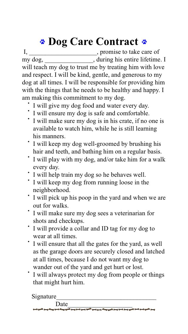 Dog Care Contract For Kids Dog Care Kid Contracts Dog