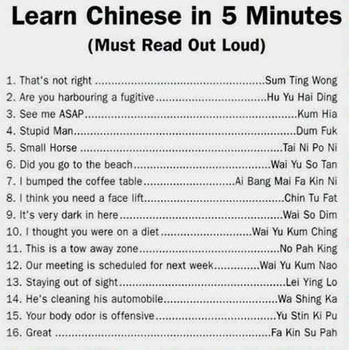 Read it out loud ...omg...funny stuff!!!