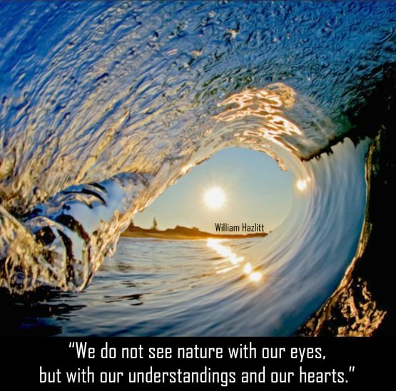 We Have To Feel For Nature So That We Can Give It A Voice Louder