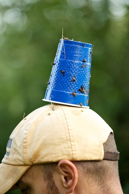Deer Fly Trap 2 Miscellany Pinterest Fly Traps