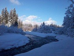 Winters, Winter Droom, Bach, Sneeuw