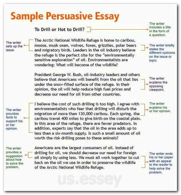 writing outlines for essays agenda example