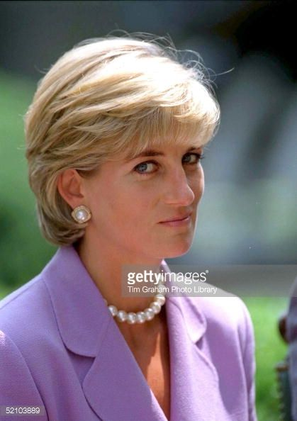 Diana, Princess Of Wales, Making An Anti-landmines