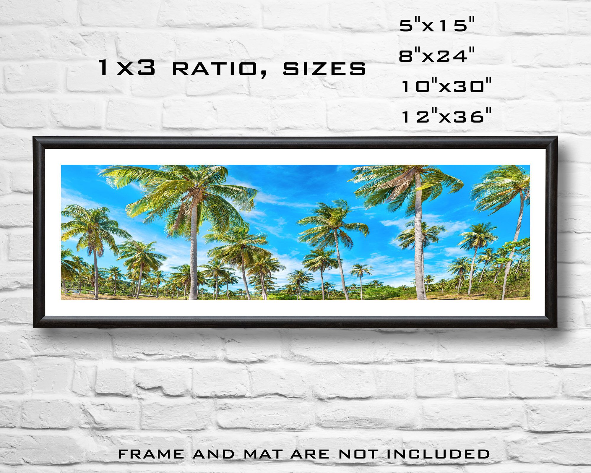 Palm Forest Panorama Wall Art Print Palm Trees Print Photography Print Panoramic Forest Topical Wall Art Panorama Print Island Palms With Images Panoramic Print Wall Art Prints Photography Print