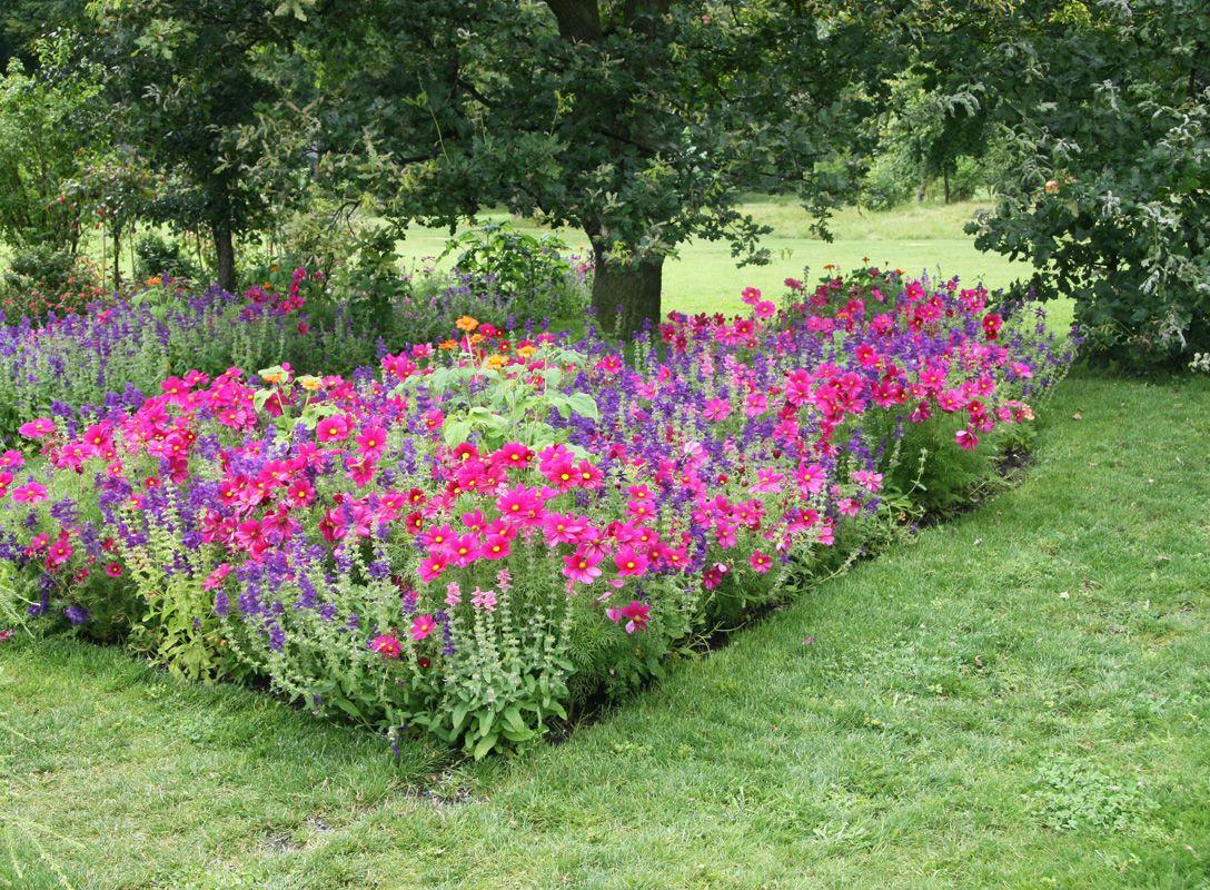 Welche Blumen Jetzt Pflanzen welche blumen jetzt pflanzen simple die garten und blumenbeete