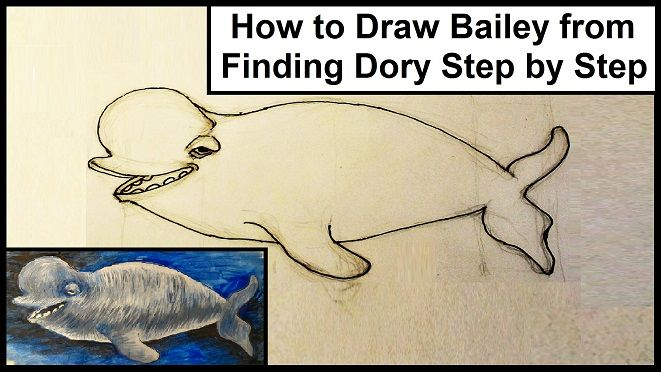 how to draw bailey beluga whale from finding dory step by step