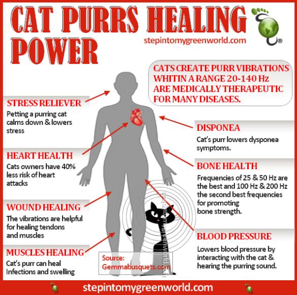 Cat health benefits