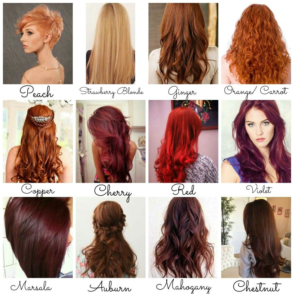 Ginger Or Auburn Only Shades Of Red Hair Hair Color Shades Red Hair Color Shades