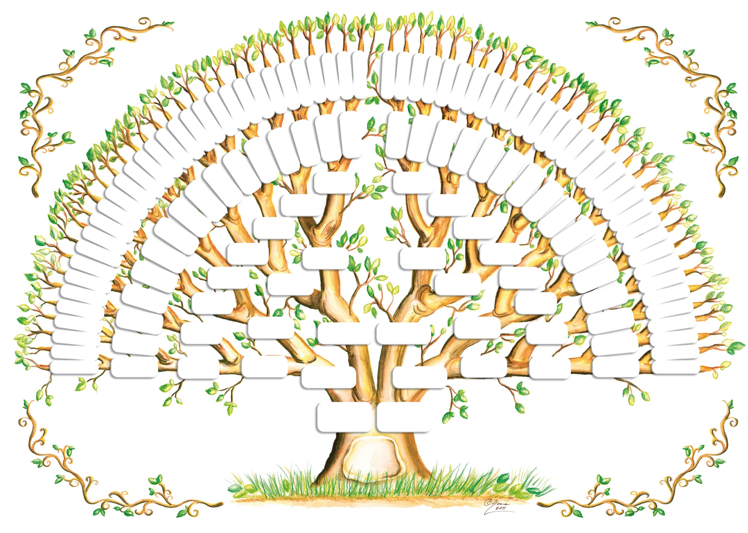 5 generation family tree template tree gallery genealogy