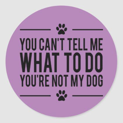 Funny Dog Lover Stickers | Zazzle.com