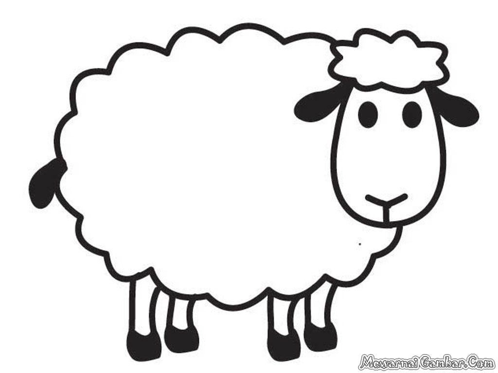 Gambar Mewarnai Hewan Domba Dengan Gambar