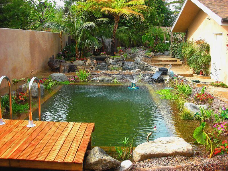 Piscina Ecol Gica Piletas Naturales Natural Swimming