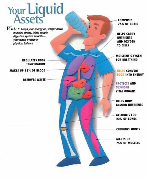 drink water infographic google search hydration infographic