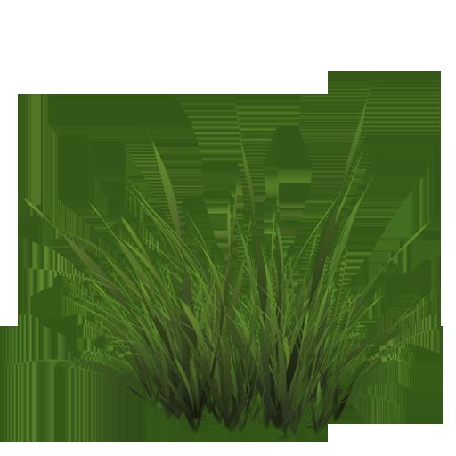 Grass01 Png 35949 512 512 Photoshop Landscape Grass Photoshop Grass Painting