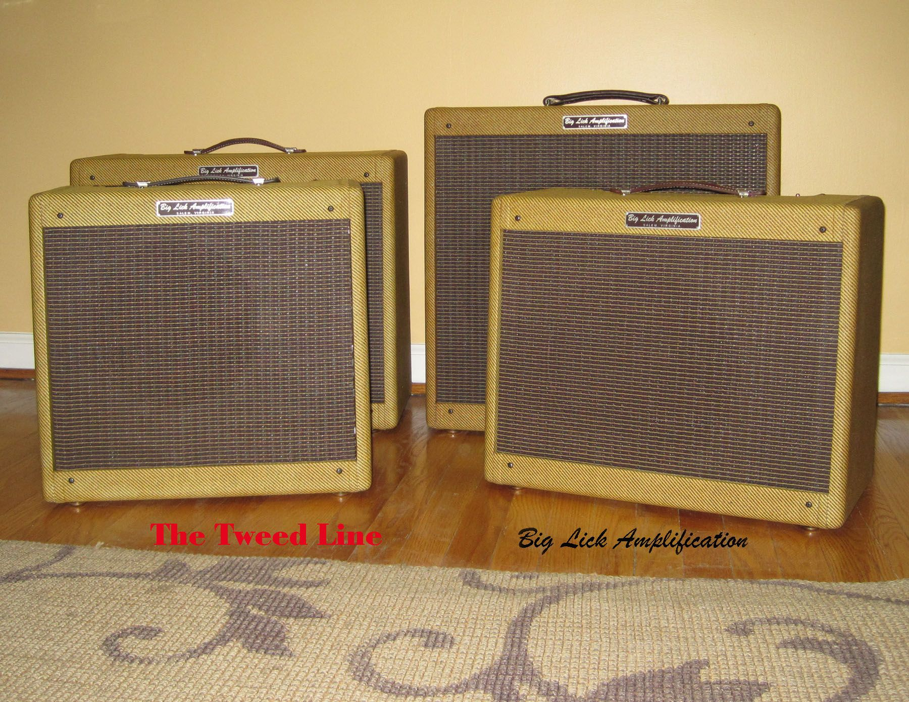 Big Lick tube amps  Get vintage tweed tone and modern reliability.