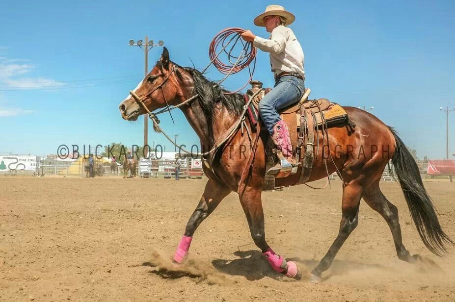 Cowgirl roping Roping horse, Western riding, Cowgirl and