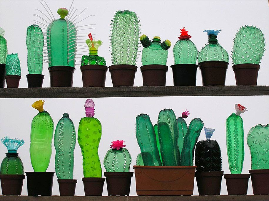 Cactus Made From Recycled Plastic Bottles By Artist