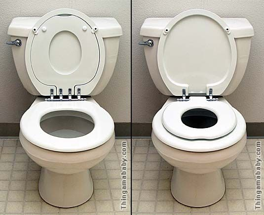 Photo Of My Toilet With The Target Seat Attached In The Up And