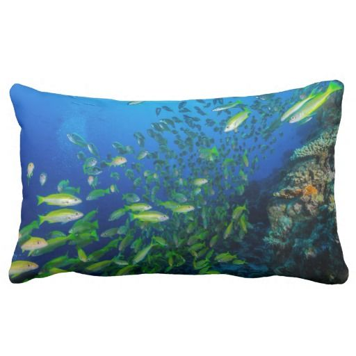 This throw pillow features a school of colorful big eye snapper chilling by the beautiful coral on Australia's Great Barrier Reef.