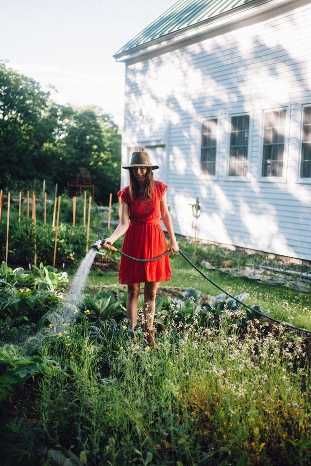 watering the garden  garden photography