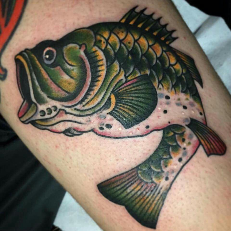 Best Bass Fish Outline 18245 Fish Drawings Trout Art Fish Outline