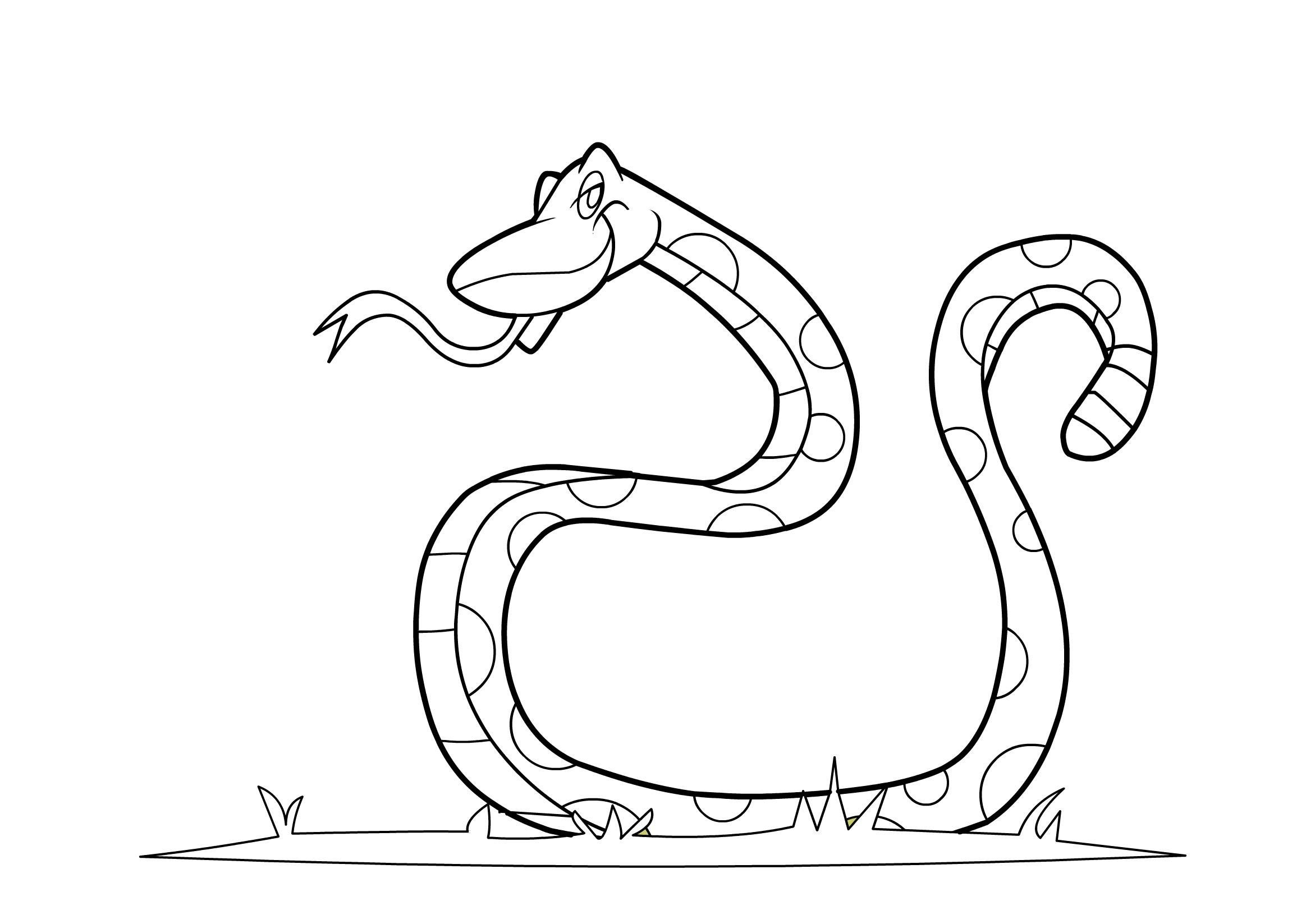 Snake To Print And Color