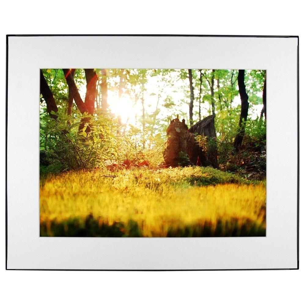 Woodland Moss Sunset Photo White Mat Framed Wall Art Jay El ...