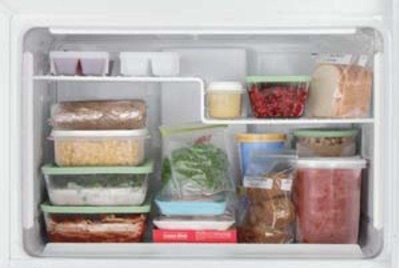 How long will food last in the fridge and freezer real