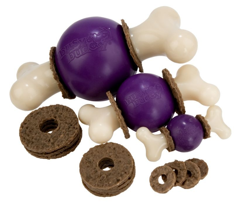 Info's : Busy Buddy Bouncy Bone Dog Toy Large               - Statelinetack.com