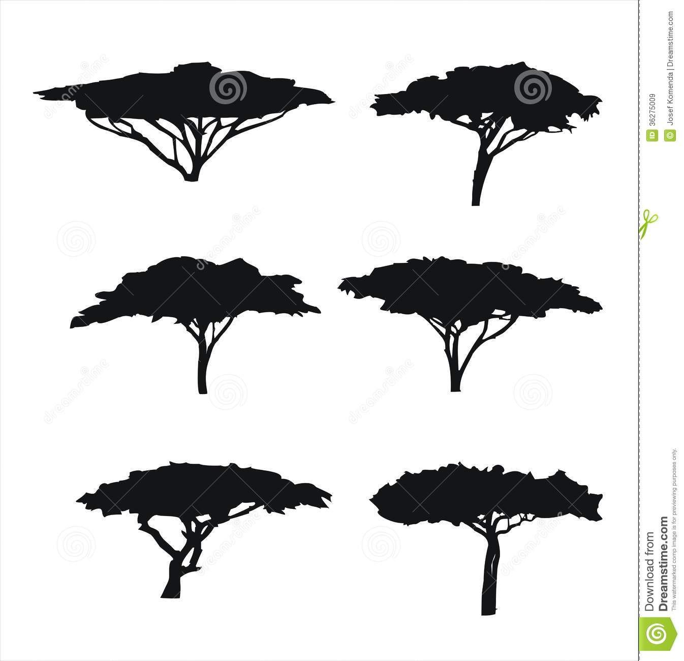 74142567fb Six Trees Acacia Silhouettes Royalty Free Stock Images - Image ...