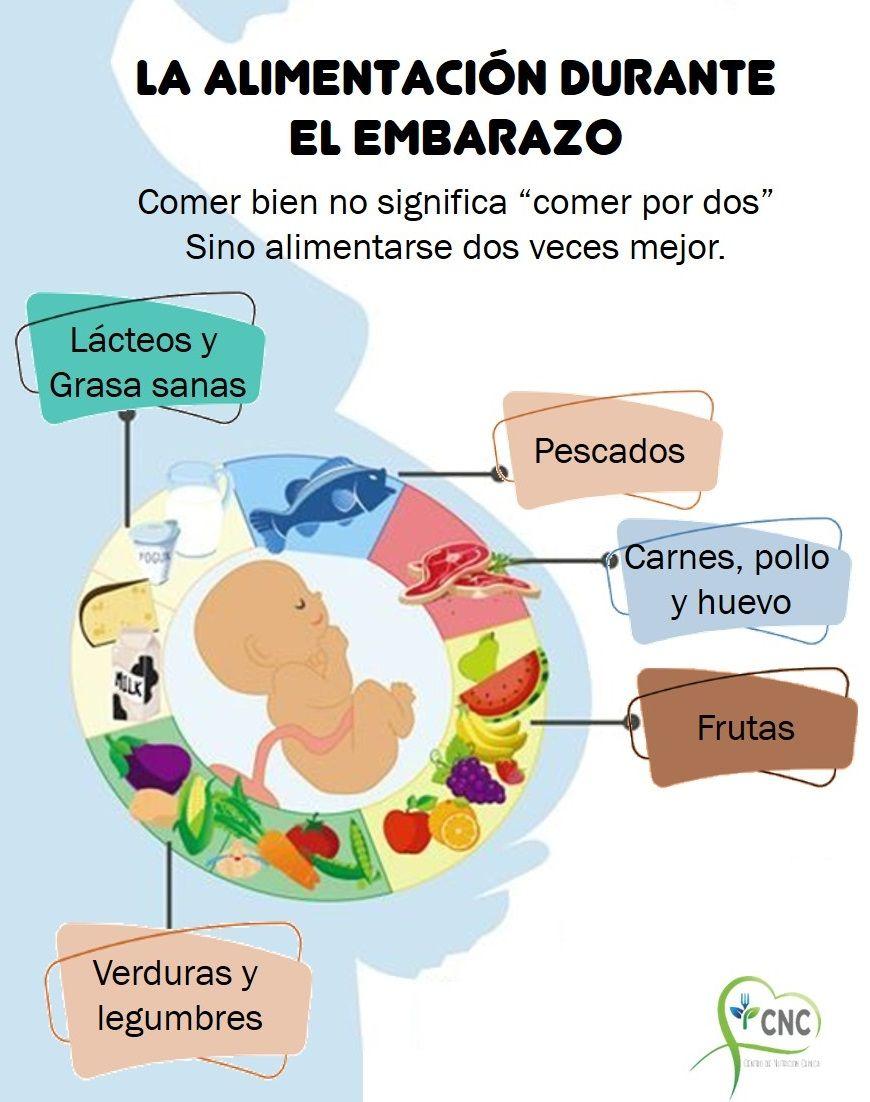 La Alimentación Durante El Embarazo Alimentacion Embarazo Embarazo Alimentacion Equilibrada