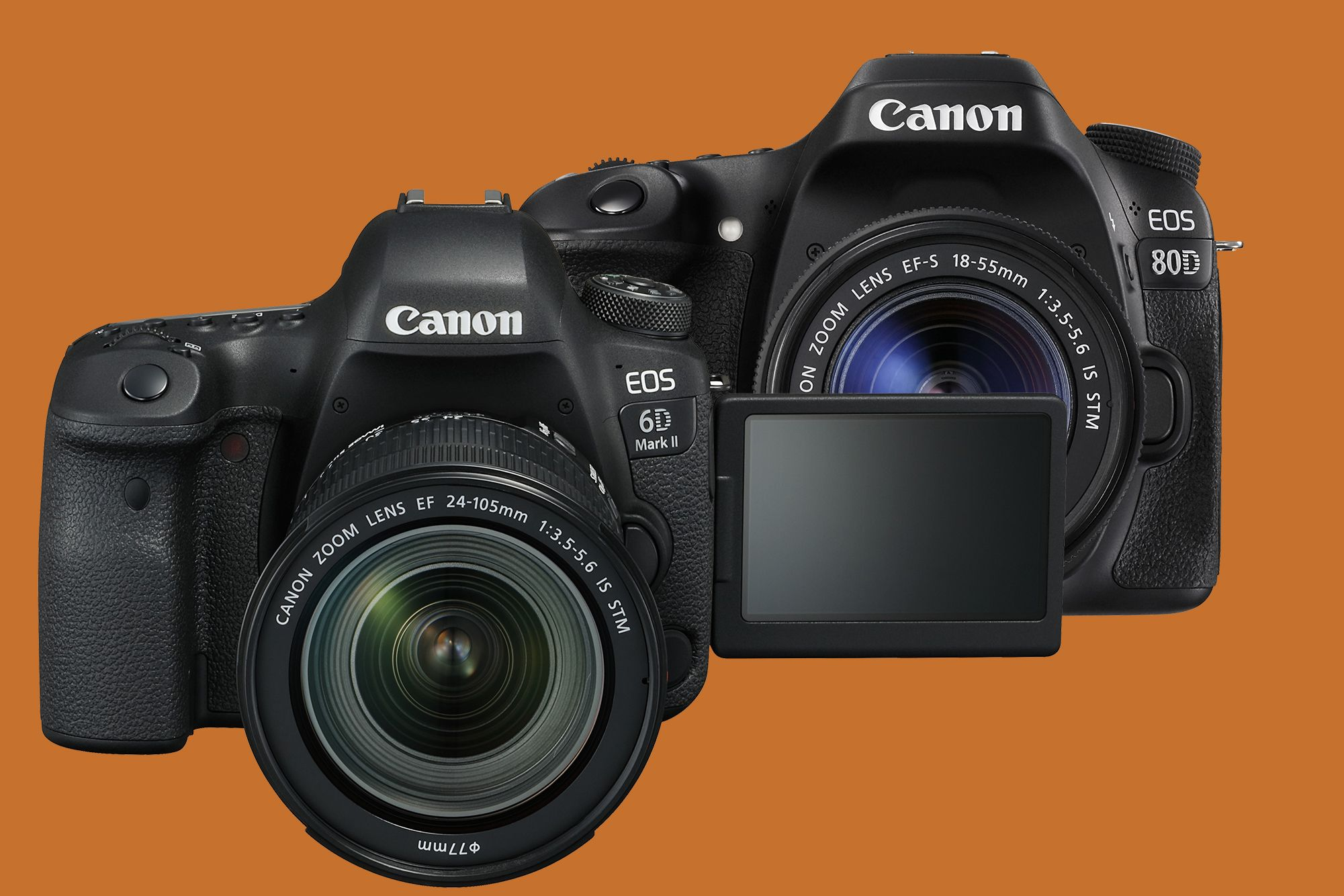 Canon 6d Mkii Vs Canon 80d Which One Should You Get Full Frame Sensor Zoom Lens Canon