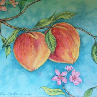 Painting of Georgia Peaches www.markballard.com