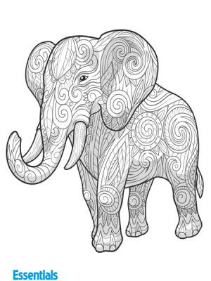 Free colouring pictures for adults and kids | Printables from web ...