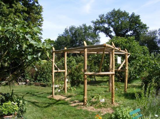 photo pergola kiwi garden pinterest kiwi pergolas and gardens. Black Bedroom Furniture Sets. Home Design Ideas