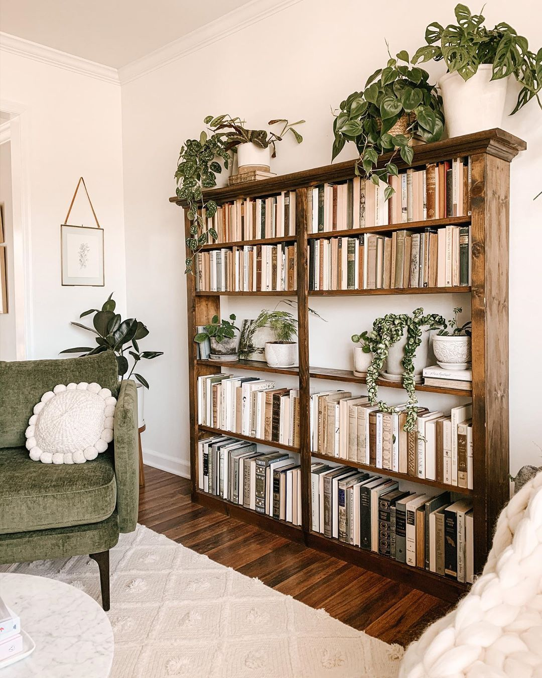 "Photo of Hannah | Thistle Harvest on Instagram: ""New Years Resolution: Buy more plants and read more books. 🌿📖"""