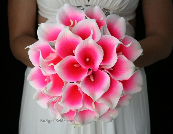 http://www.budget-bride.com/Pink-Halo-Collection_p_3097.html hot pink wedding flowers