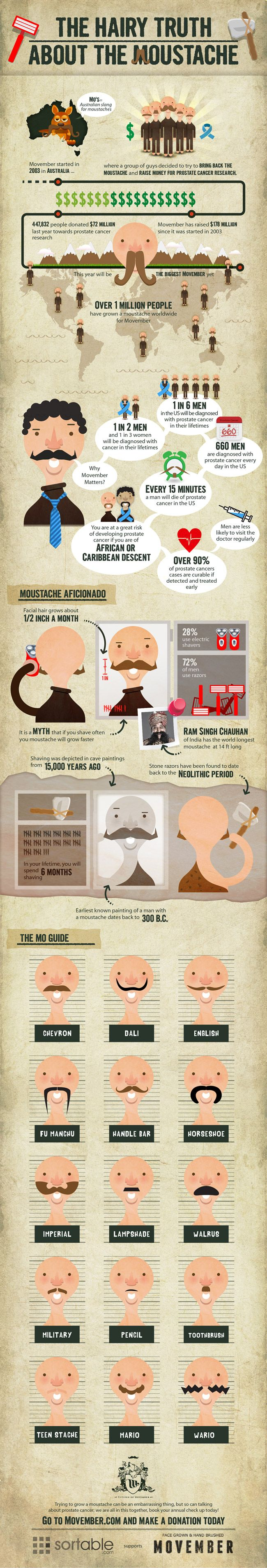 In Celebration Of The Passing Of Movember And My Husband S Wonderful Yet Brief Participation In It Movember Mustache Movember Infographic
