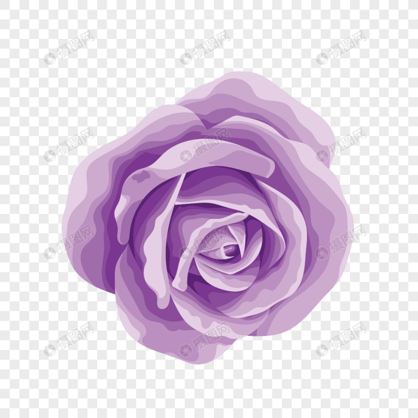 Rose Roses Cartoon Roses Beautiful Roses Bright Roses Flowers Beautiful Roses Purple Roses Rose Purple Roses Pink Rose Flower