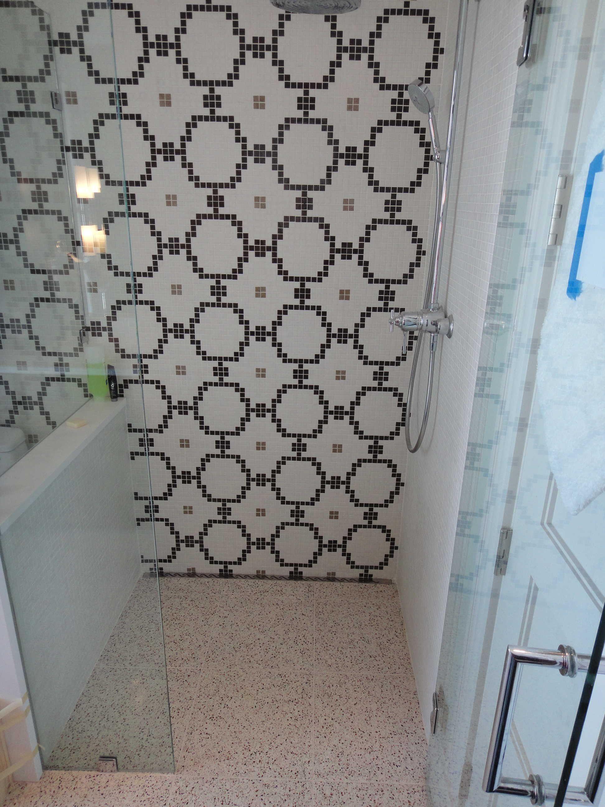 Walk In Shower Quickdrain Proline Linear Drains