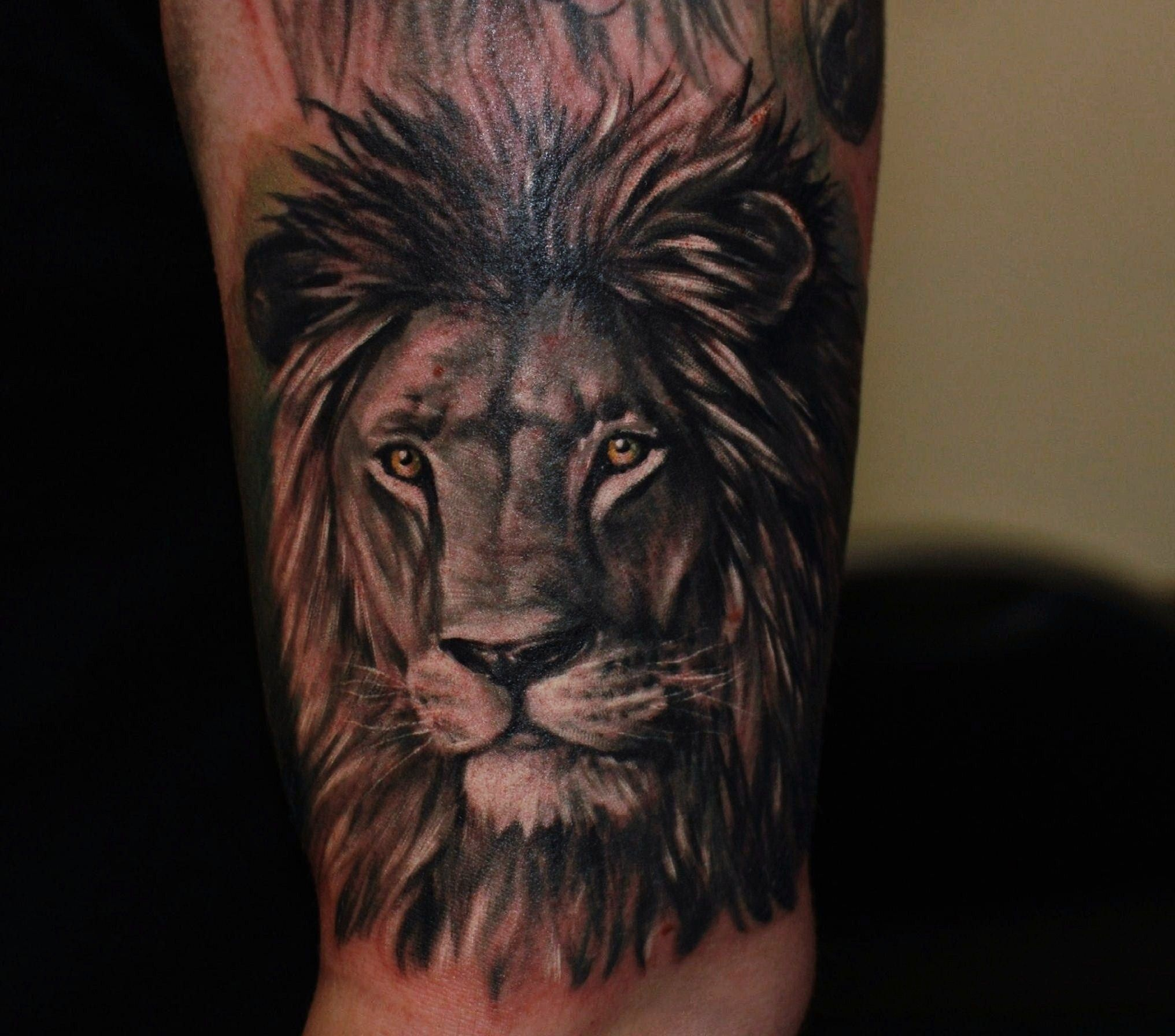 150 realistic lion tattoos and meanings 2017 collection -  Grey Lion Tattoo