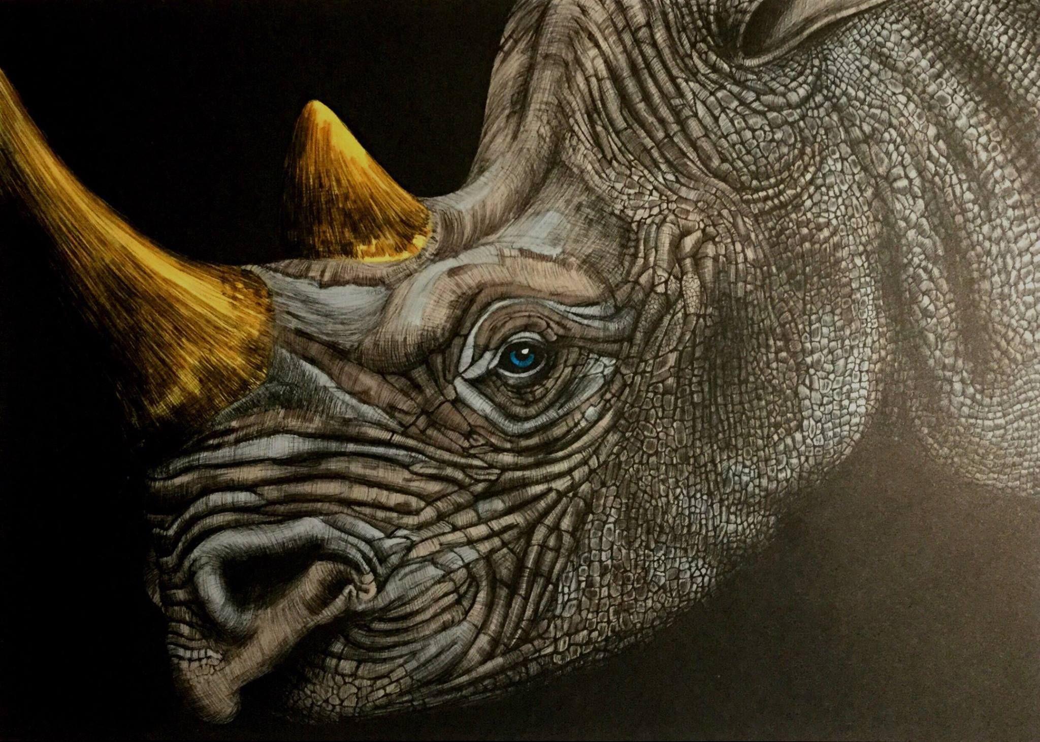 Rhinoceros By Benji Jager Dieren Inkt Kleurplaten