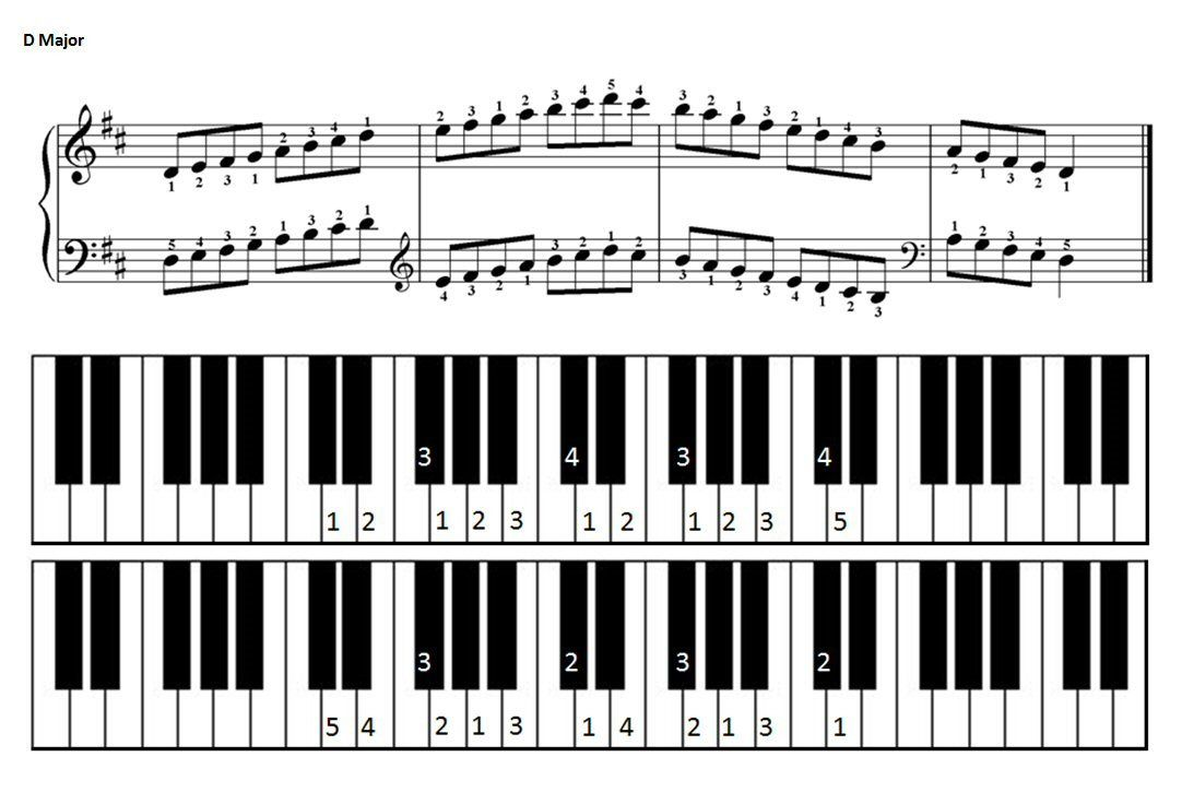 How to play d major scale on keyboard
