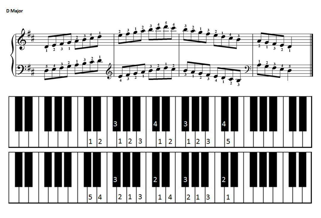 D Major Scale For Piano Piano Scales Major Scale Learn Piano